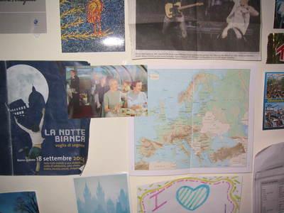 my room walls 1